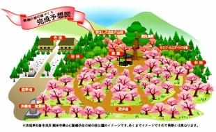 復興と希望の桜の森のイメージ